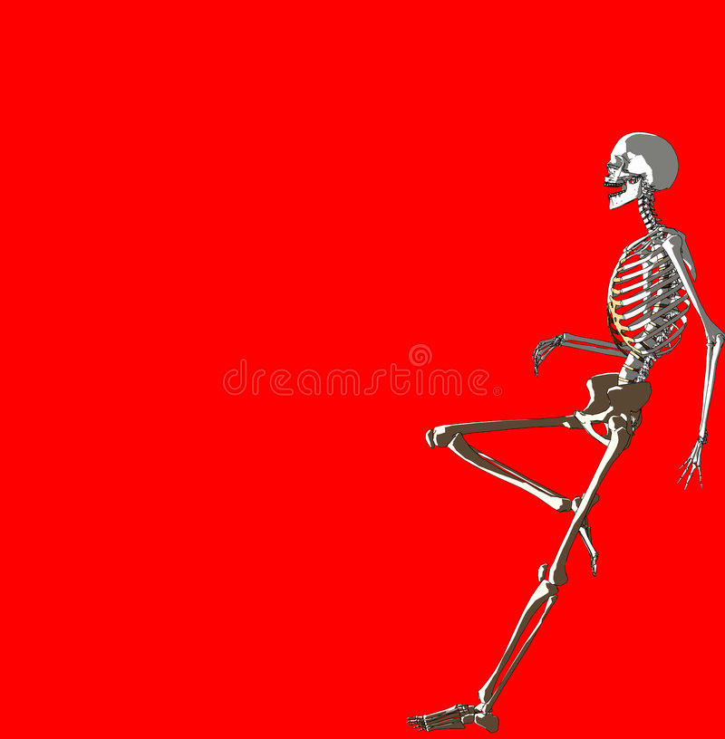 Knochen 237 vektor abbildung