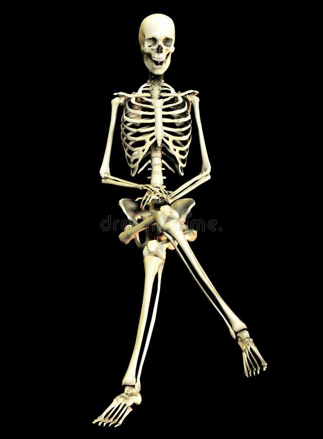 Knochen 3+9 lizenzfreie abbildung