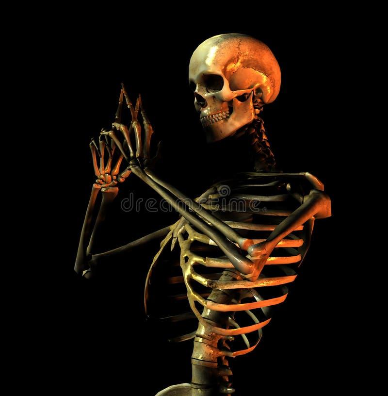 Knochen 9 lizenzfreie abbildung