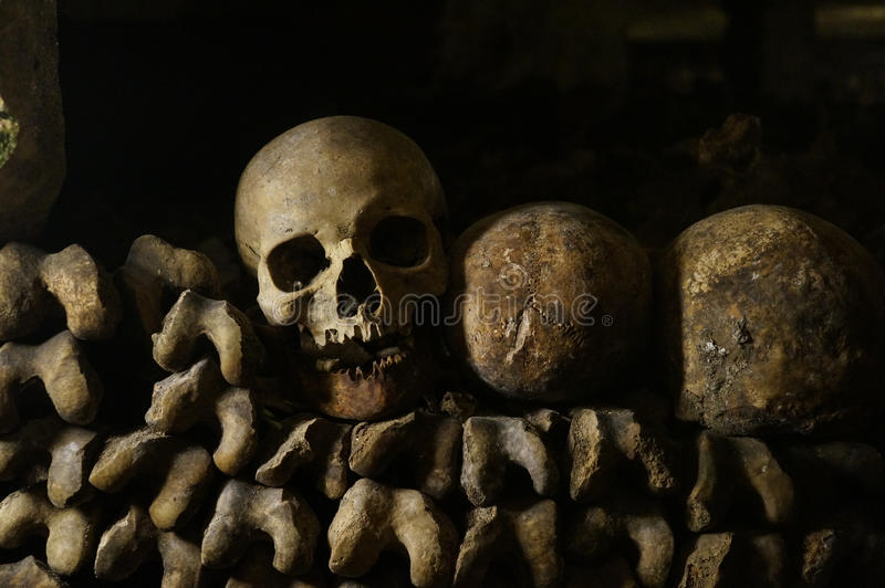 Knochen, Skelette und Schädel lizenzfreie stockfotos