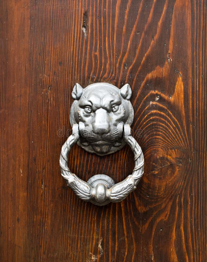 Feline head door knocker. Knocker in metal feline`s head on old wooden door royalty free stock photos