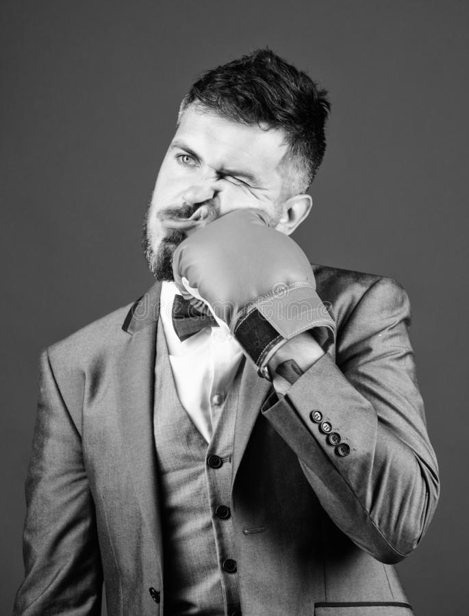 Knockout and energy. Fight. Business and sport success. powerful man boxer ready for corporate battle. businessman in. Suit and bow tie. bearded man in boxing royalty free stock images