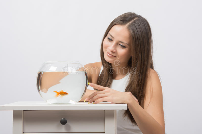 She knocks on the finger on the glass aquarium with goldfish. A young girl sits next to a round aquarium in which swimming goldfish stock photography