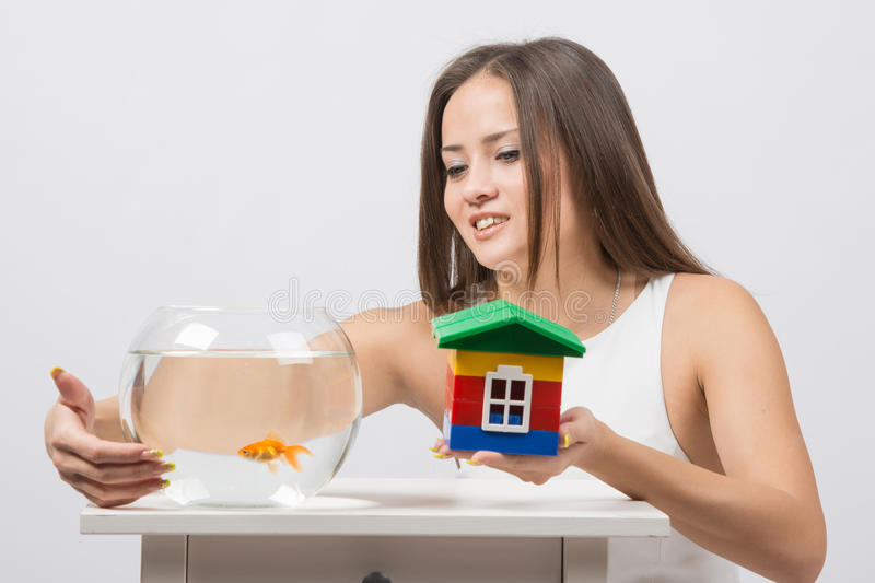 She knocks on the wall of the aquarium with goldfish and the other hand holding a toy house. A young girl sits next to a round aquarium in which swimming royalty free stock photos