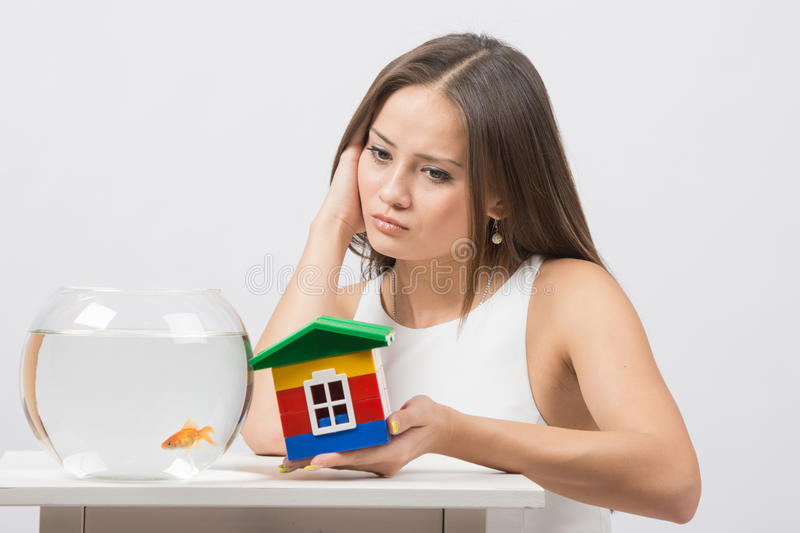 She knocks on the wall of the house a toy aquarium with goldfish. A young girl sits next to a round aquarium in which swimming goldfish stock image