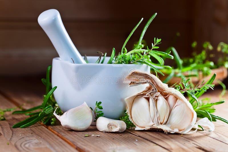 Knoflook en groene kruiden stock fotografie