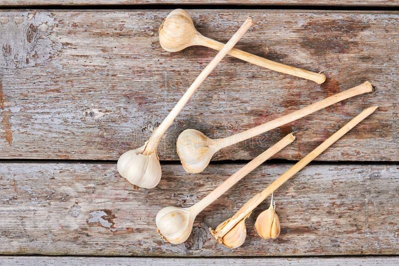 Knoflook met stam op hout stock afbeelding