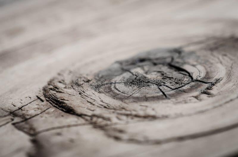 Knoop in een stuk van hout royalty-vrije stock afbeelding