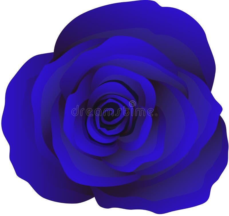 Knopp av blåa rosor, vektor royaltyfri illustrationer
