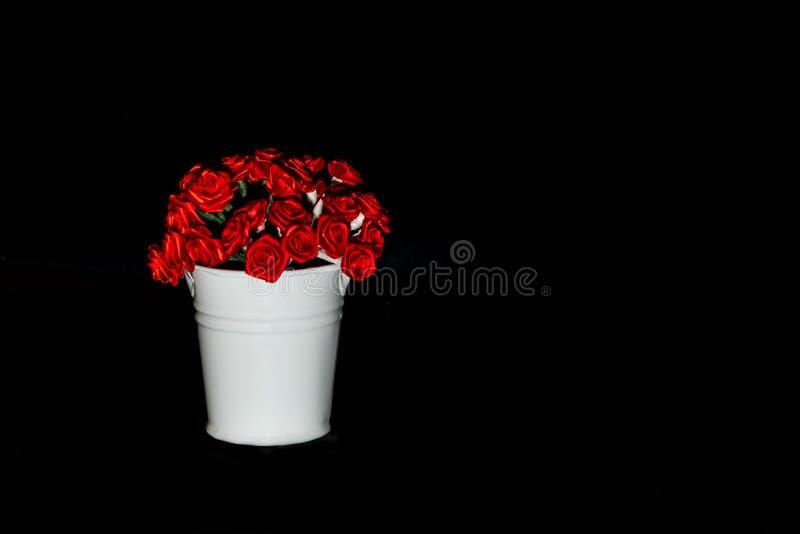 Knoppar för röda rosor i en vit hink på en svart bakgrund arkivfoton