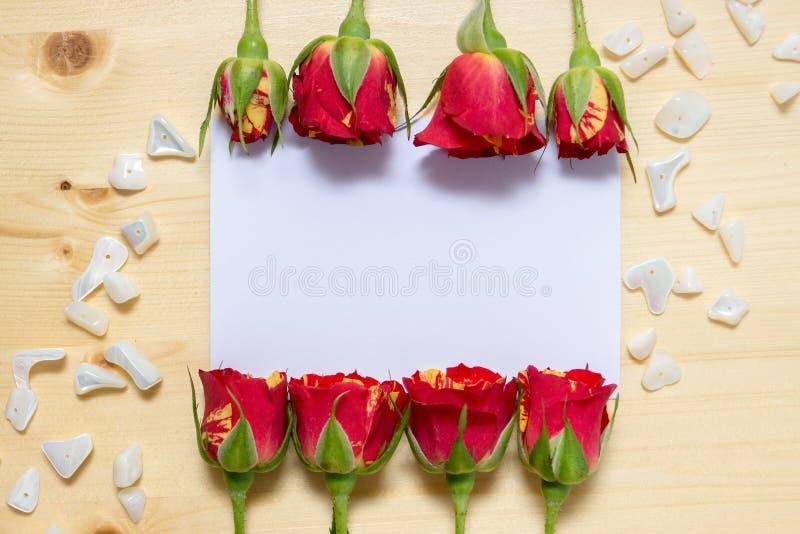 Knopparna av rosor ligger på kanterna av ett ark av vitbok arkivbild
