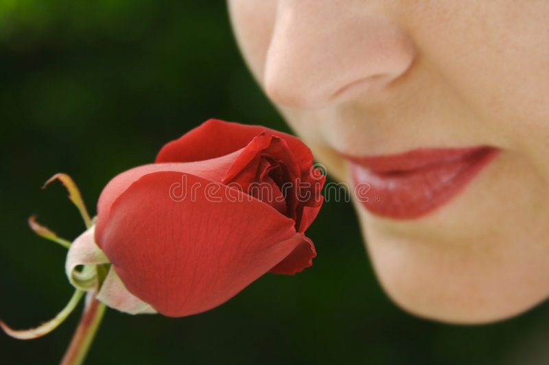 knoppen steg den lukta kvinnan arkivfoton