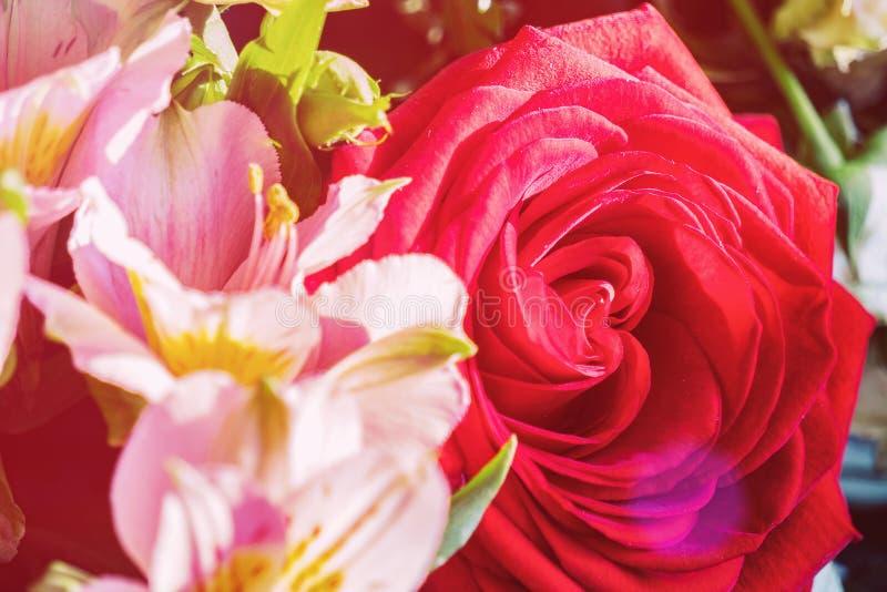 Knospe einer roten Rose im Blumenstrauß lizenzfreie stockfotos