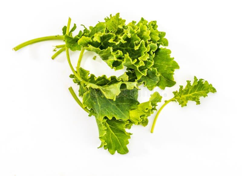 Knospen des Kohlkohls Salat mit einem rustikalen und gesunden Aspekt stockfotos
