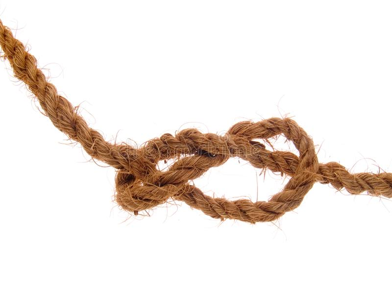 The knot stock photography