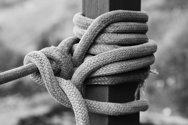 Knot black and wite royalty free stock image