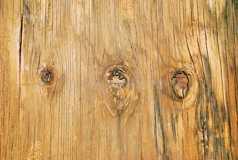 Knoten in verwittertem Furnierholz stockfotos
