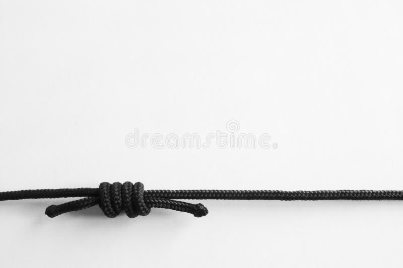 Knoten. Weinstock #3 lizenzfreies stockfoto