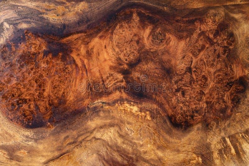 Knotenholz gestreift für Bilddruck-Innenausstattungsauto, exotisches hölzernes schönes Muster für Handwerk oder abstrakte Kunst t stockbild