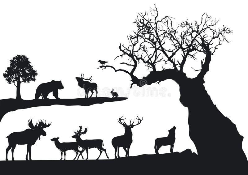 Knotiger Baum und wild lebende Tiere   stock abbildung