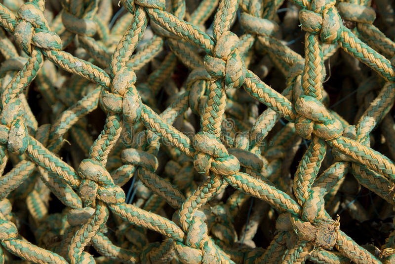 Knots. stock image