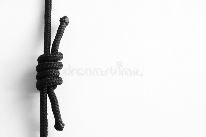 Download Knots. Grapevine #2 Royalty Free Stock Image - Image: 2309546