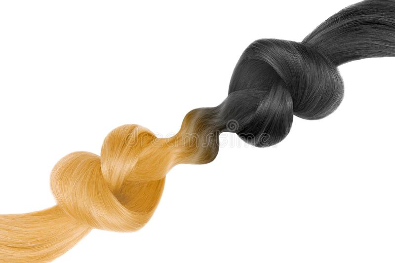 Knots of hair in shape of heart, isolated on white background. Black and blond. Care concept stock photos