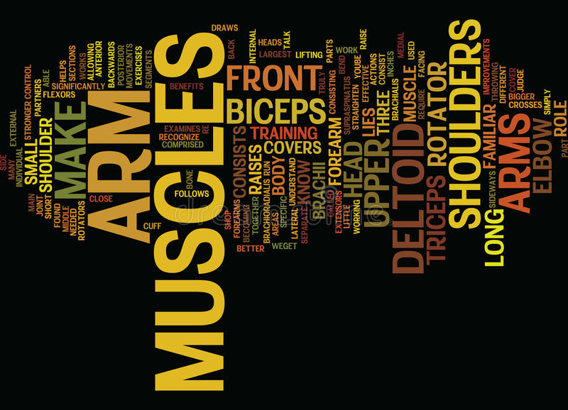 Know Your Muscles The Lower Body Text Background Word Cloud Concept vector illustration