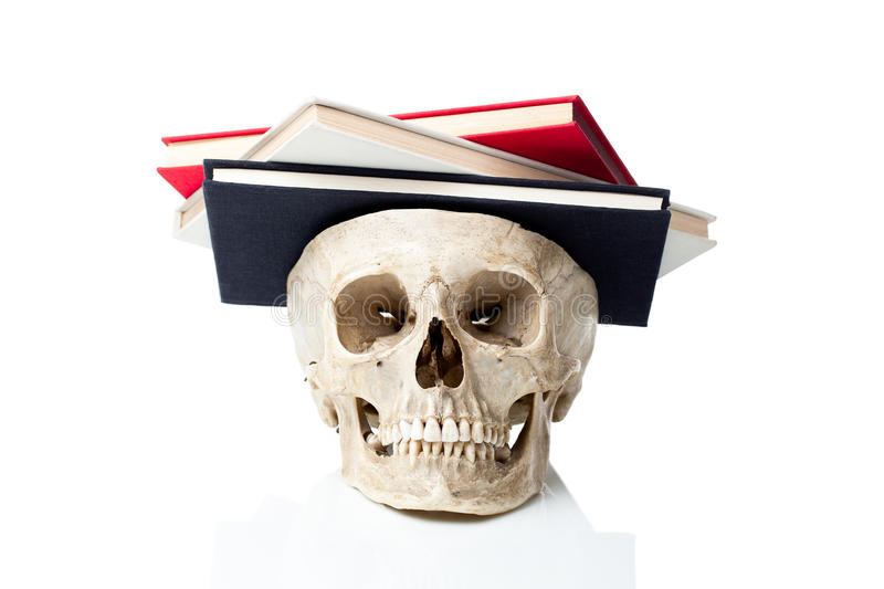 Knowledge. royalty free stock photo