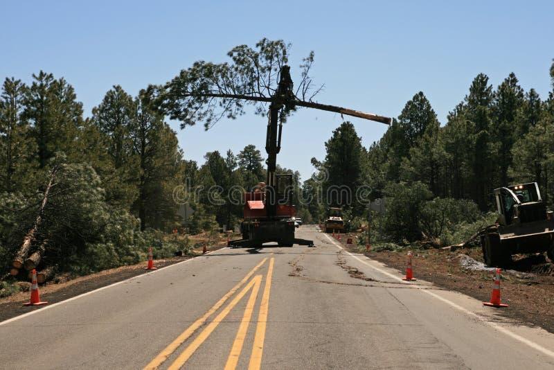 Knuckleboom Loader Moves Tree Stock Image