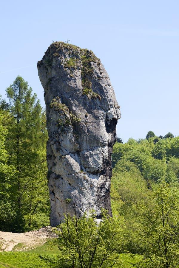 Knuppel van Hercules Maczuga Herkulesa, Pieskowa Skala, Polen royalty-vrije stock afbeeldingen