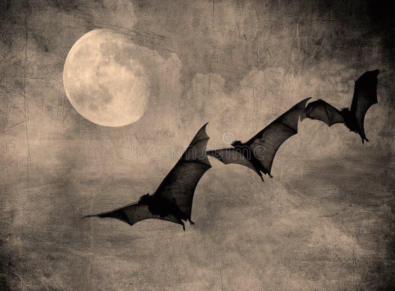 Knuppels in de donkere bewolkte hemel, Halloween achtergrond royalty-vrije illustratie
