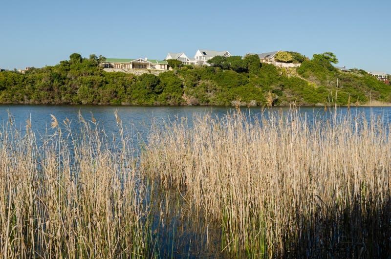 Knysna, itinerario del giardino, Sudafrica fotografie stock libere da diritti