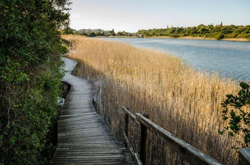 Knysna, itinerario del giardino, Sudafrica fotografia stock libera da diritti