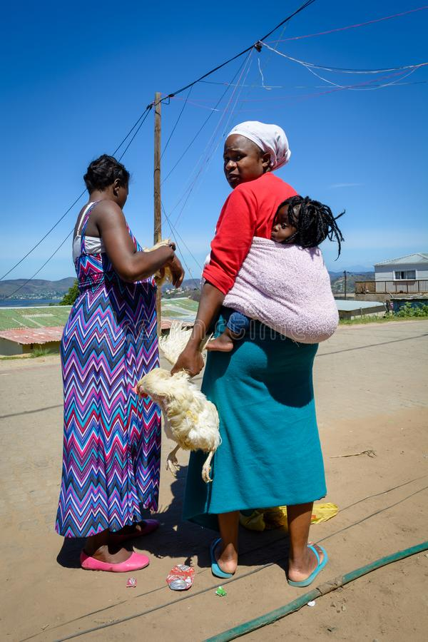 Women carrying chickens in a township in Knysna royalty free stock photos