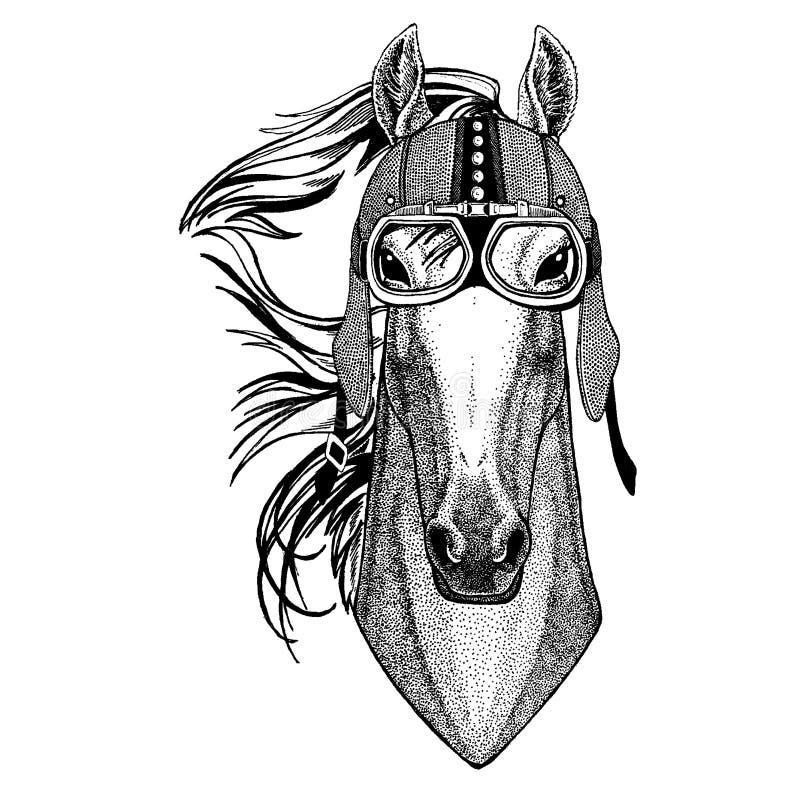Koń, hossa, rycerz, rumak, courser jest ubranym motocykl, aero hełm Rowerzysta ilustracja dla koszulki, plakaty, druki royalty ilustracja