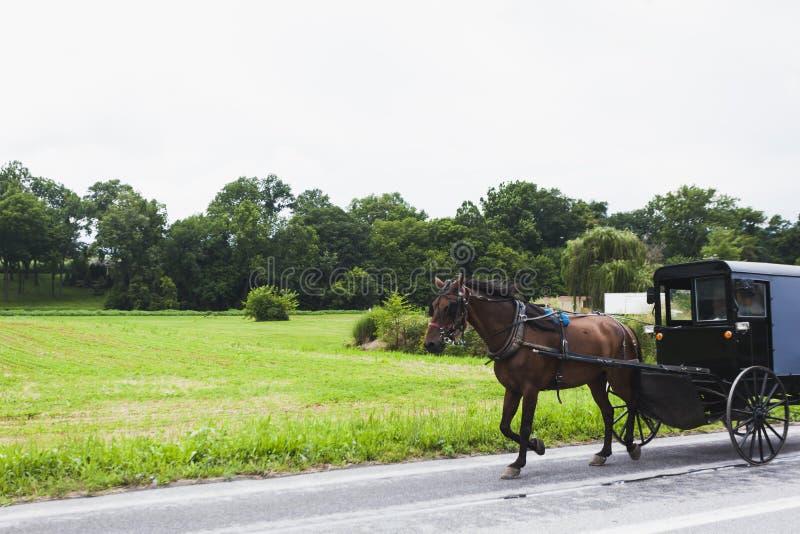 Koń i fracht w Amish kraju obrazy stock