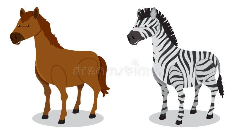 Koń i zebra na Białym tle royalty ilustracja