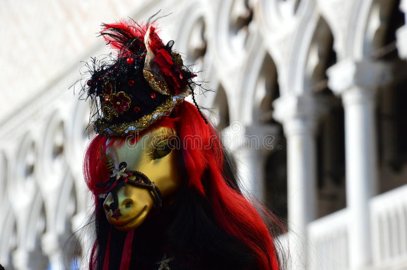 Koń jak maska fotografia royalty free