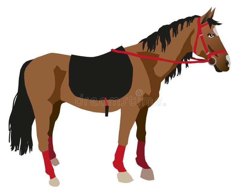 Koń na białym tle royalty ilustracja