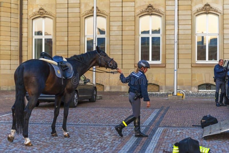 Koń policja przy pracą obrazy royalty free