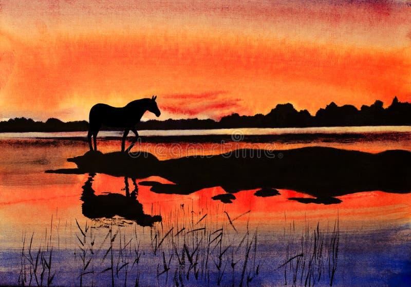 Koń przy zmierzchem ilustracji