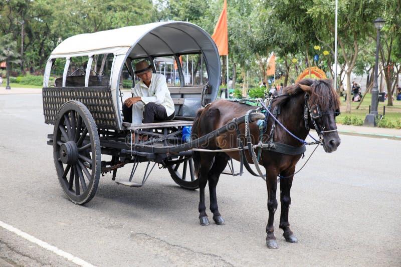 Koń z frachtem przy Intramuros obrazy stock