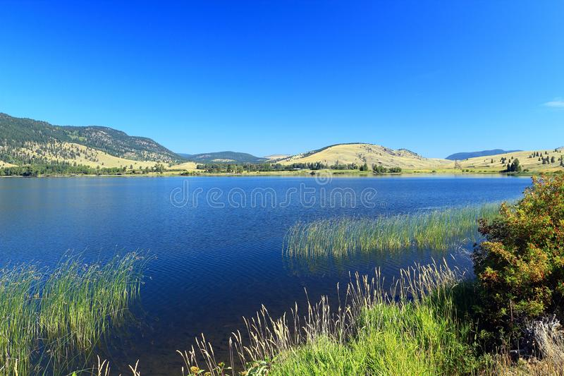 Końcówka Nicola jezioro w Wewnętrznych plateau blisko Merrit, kolumbia brytyjska zdjęcie royalty free