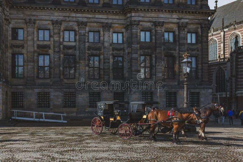 Końscy frachty przed Royal Palace w Dam Square zdjęcia stock