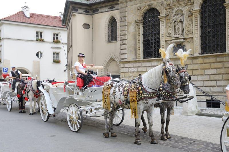 Końscy frachty w Krakow obraz royalty free
