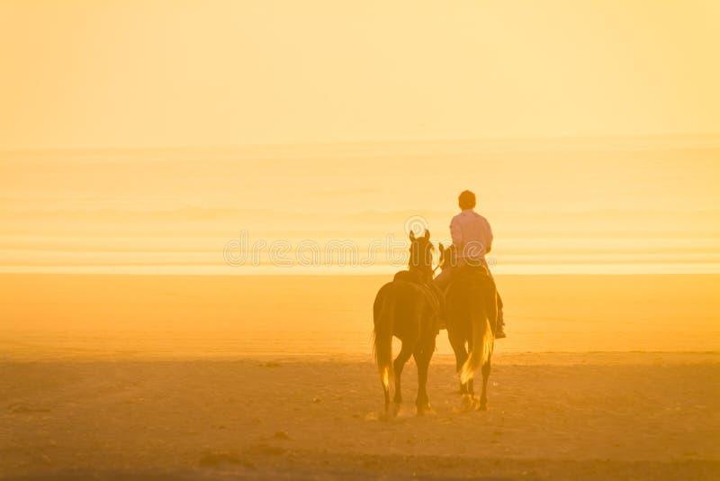 Końska jazda na plaży przy zmierzchem zdjęcia royalty free