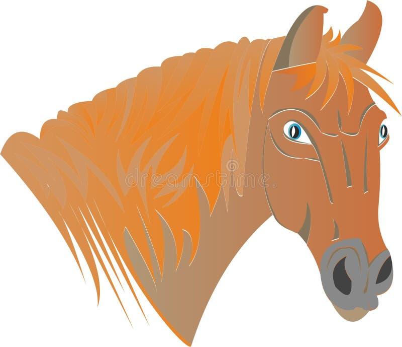 Końska rudzielec ilustracji