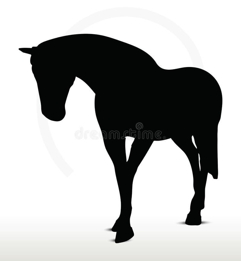 Końska sylwetka ilustracji