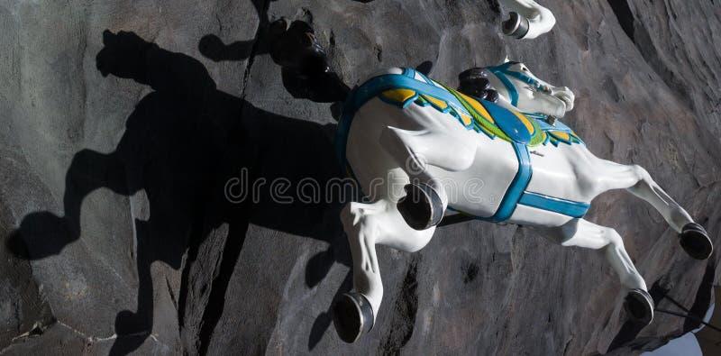 Koński cień i przejażdżka zdjęcie stock